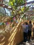 Interfaith Sukkah Event at Casa de Maria.